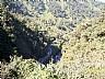 Selva Tucumana en Tafí del Valle